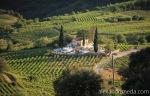On the hills near Patras